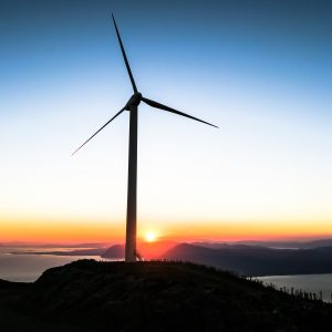 Sustainable rural electrification using rice husk biomass energy